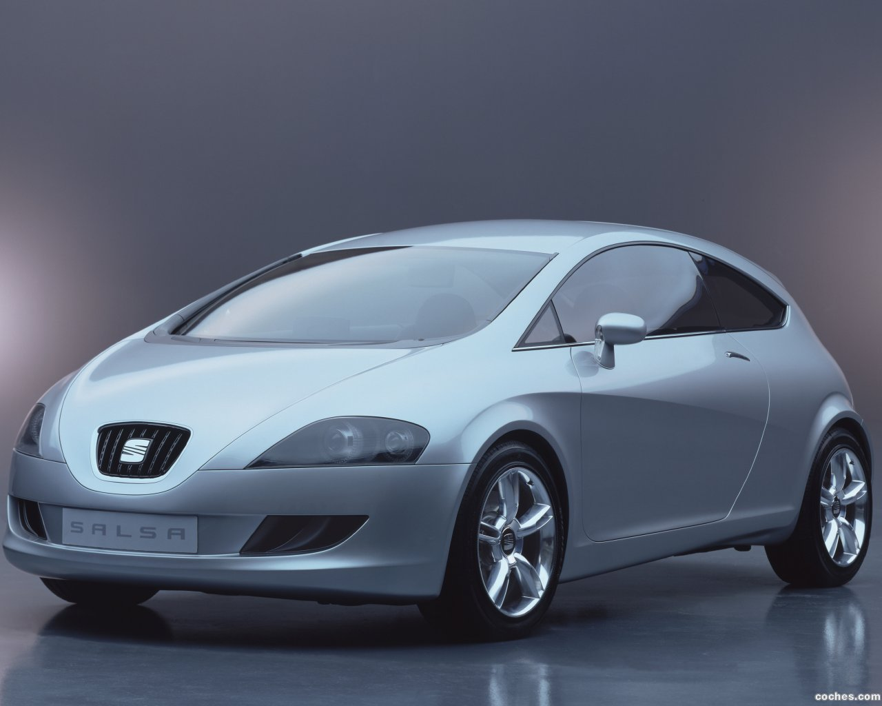 Foto 0 de Seat Salsa Concept 2003