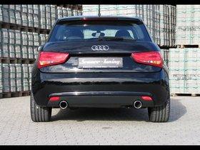Ver foto 11 de Senner Audi A1 2010