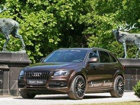 Ver foto 11 de Senner Audi Q5 2011