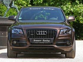 Ver foto 10 de Senner Audi Q5 2011