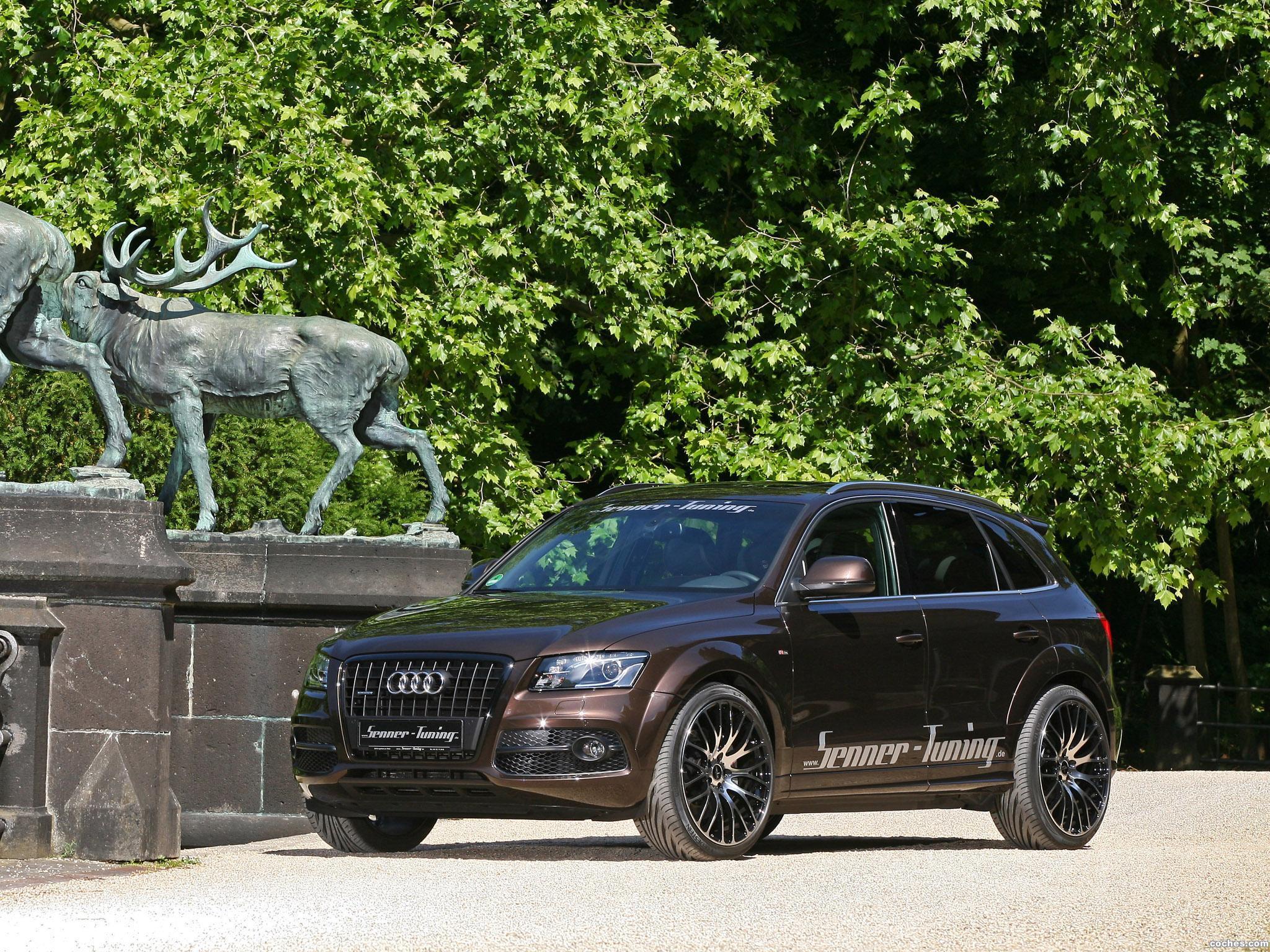 Foto 1 de Senner Audi Q5 2011