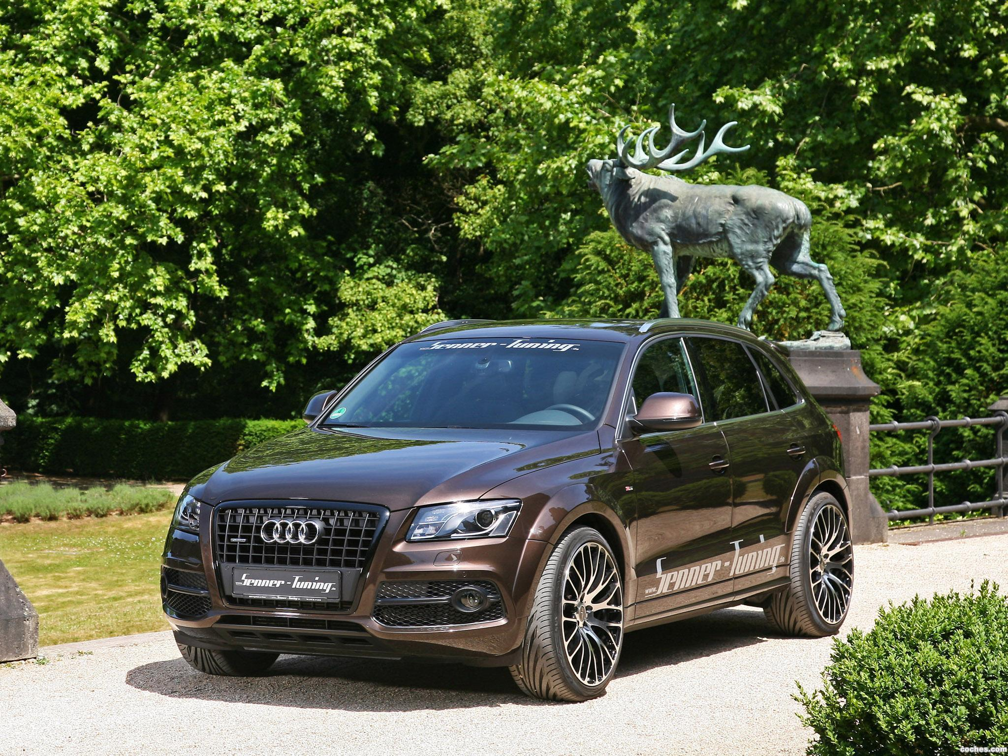 Foto 11 de Senner Audi Q5 2011