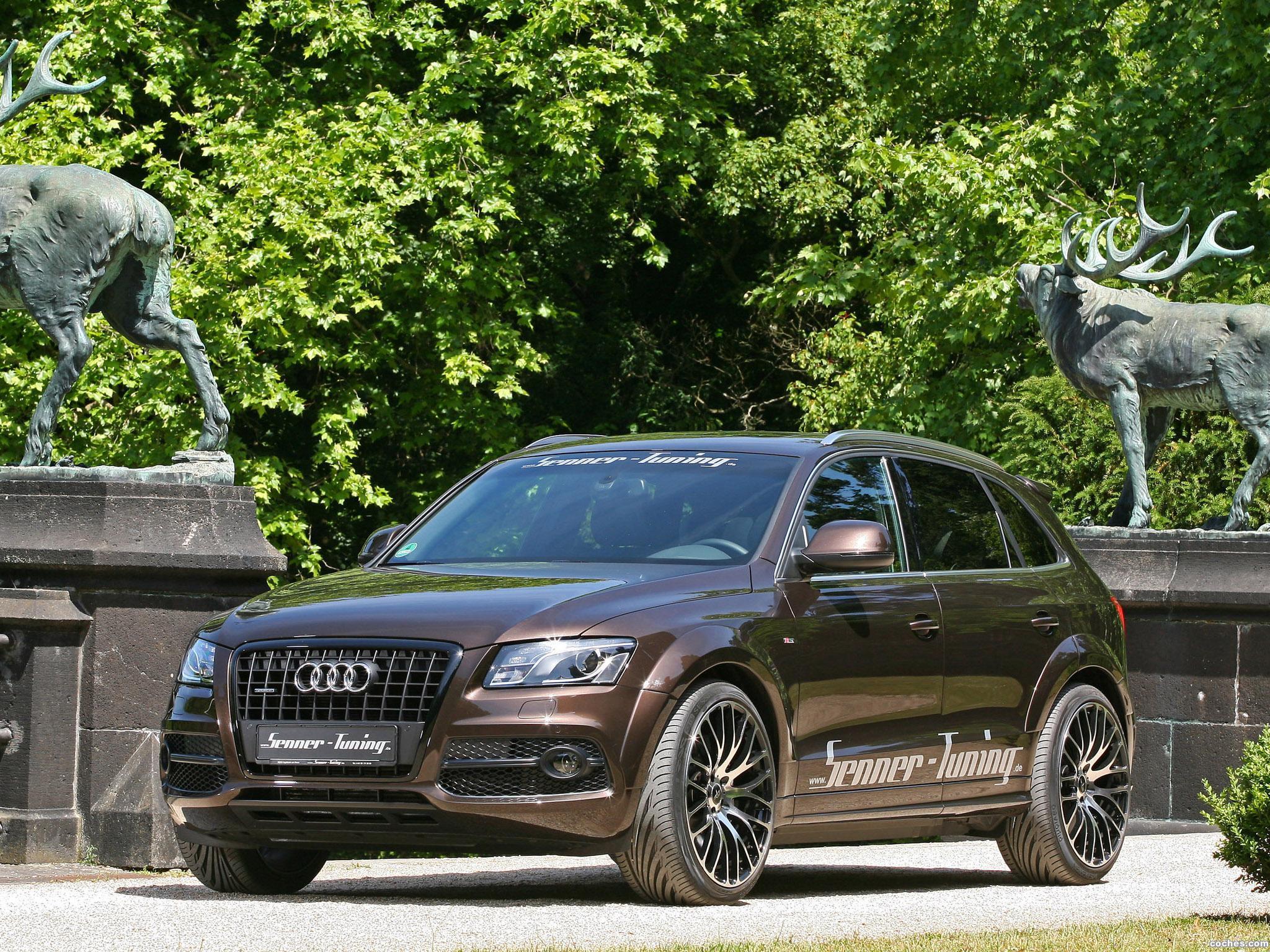 Foto 10 de Senner Audi Q5 2011