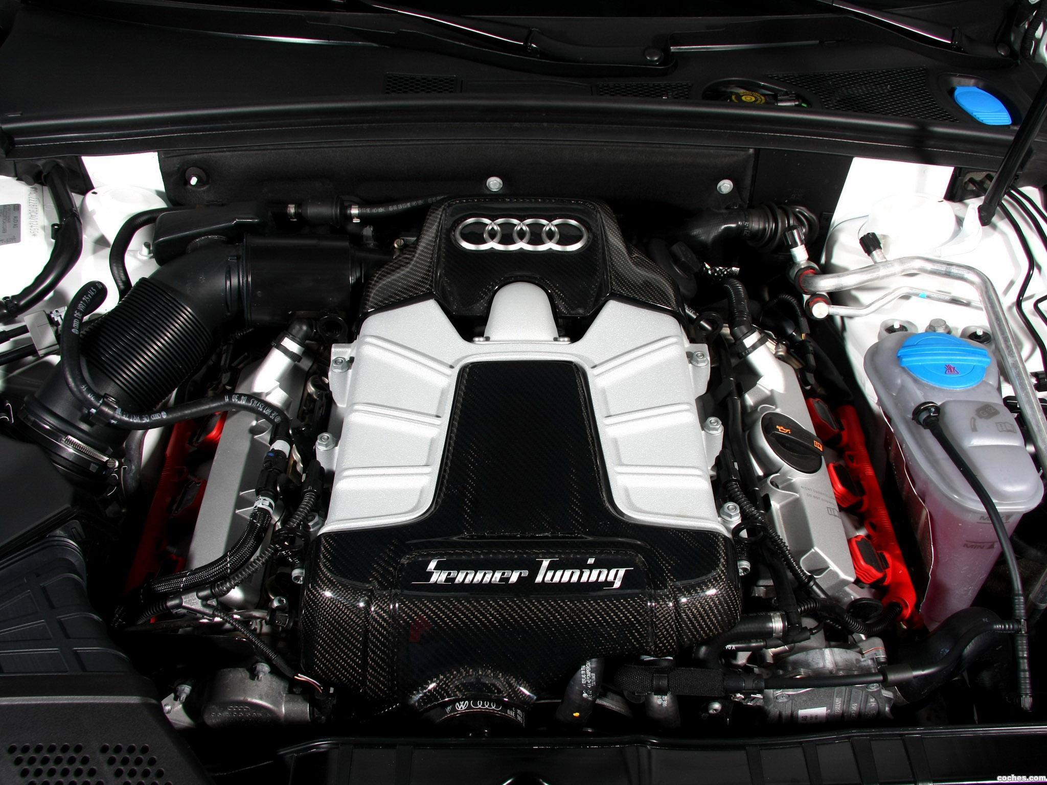 Foto 3 de Audi Senner S5 Cabriolet 2013