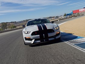 Ver foto 13 de Shelby Ford Mustang GT350-R 2015