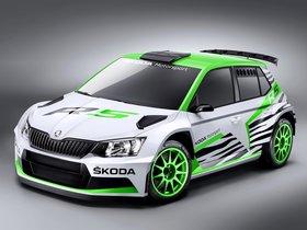 Ver foto 1 de Skoda Fabia R5 Concept 2014