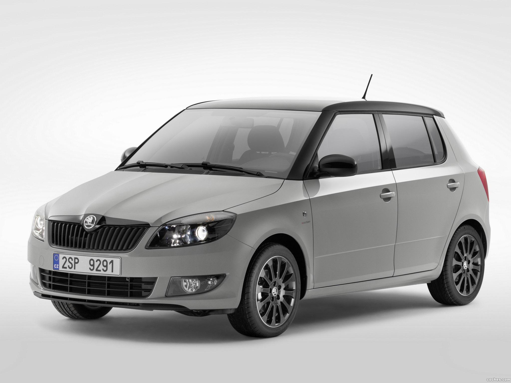 Foto 0 de Skoda Fabia Reaction 2013