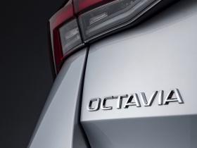 Ver foto 34 de Skoda Octavia Combi TDI 2020