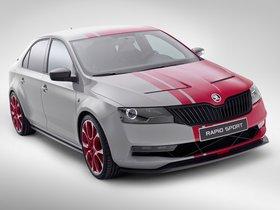 Ver foto 6 de Skoda Rapid Sport Concept 2013