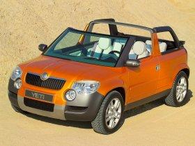 Ver foto 6 de Skoda Yeti Pick Up Concept 2005