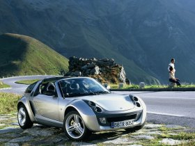 Ver foto 8 de Smart Roadster Coupe 2003