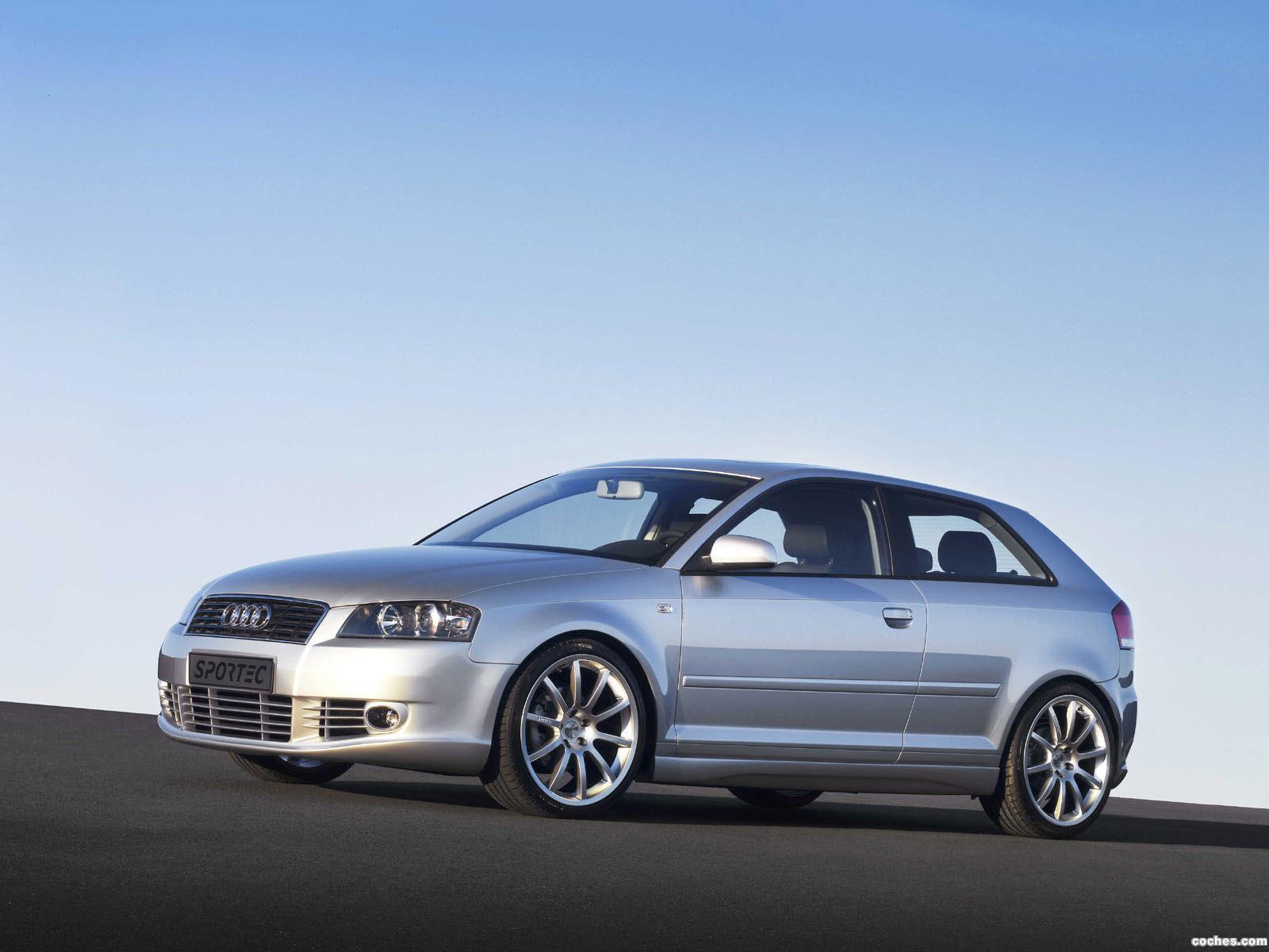 Foto 0 de Sportec Audi A3 8p 2010
