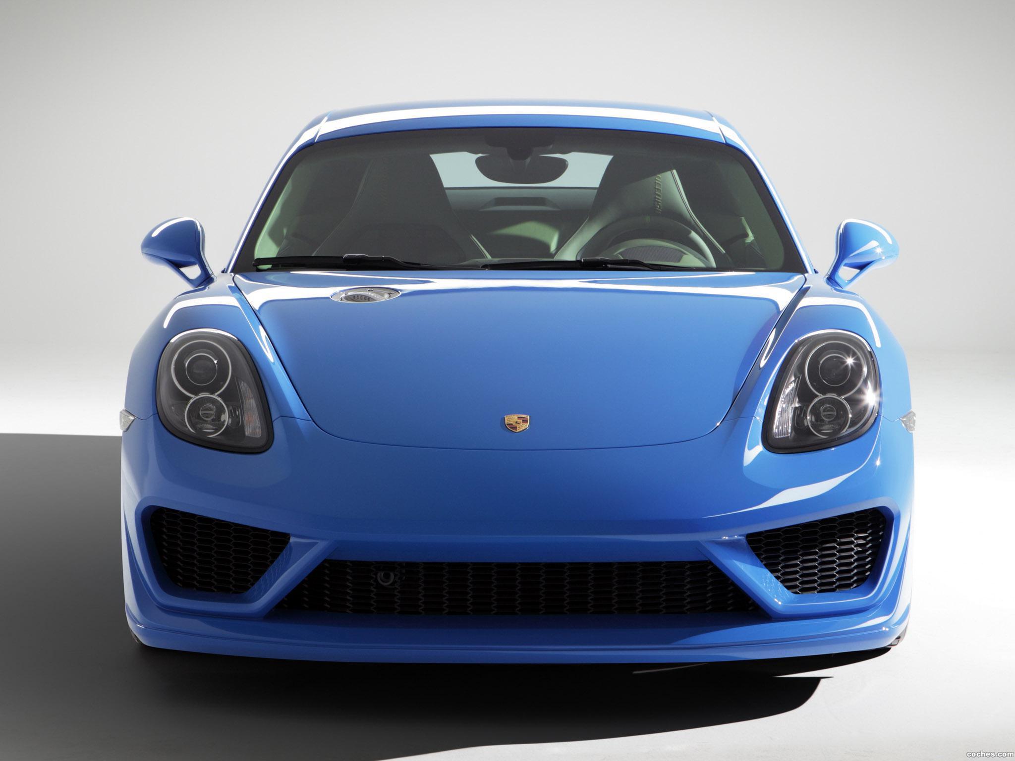 Foto 5 de Porsche Studiotorino Cayman Moncenisio 2014