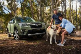 Ver foto 10 de Subaru Forester Hybrid 2019