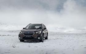 Ver foto 26 de Subaru Outback Executive Plus 2018