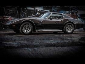Ver foto 4 de Chevrolet Vilner Corvette Stingray 1976 C3 2013
