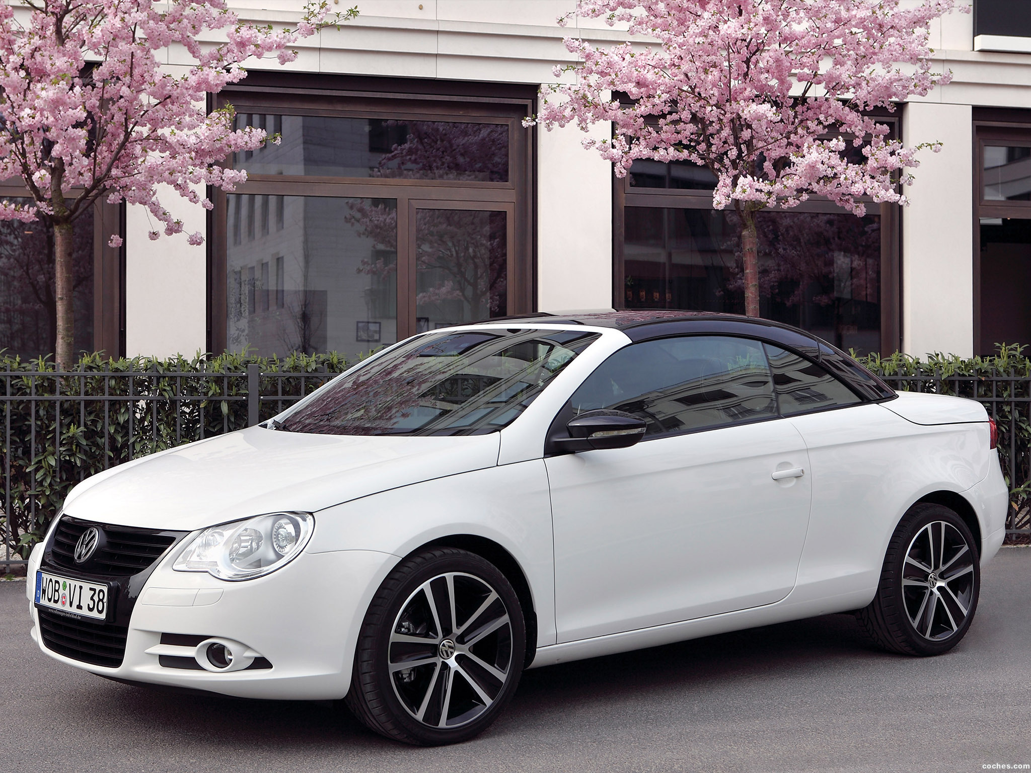 Foto 0 de Volkswagen Eos White Night Edition 2008