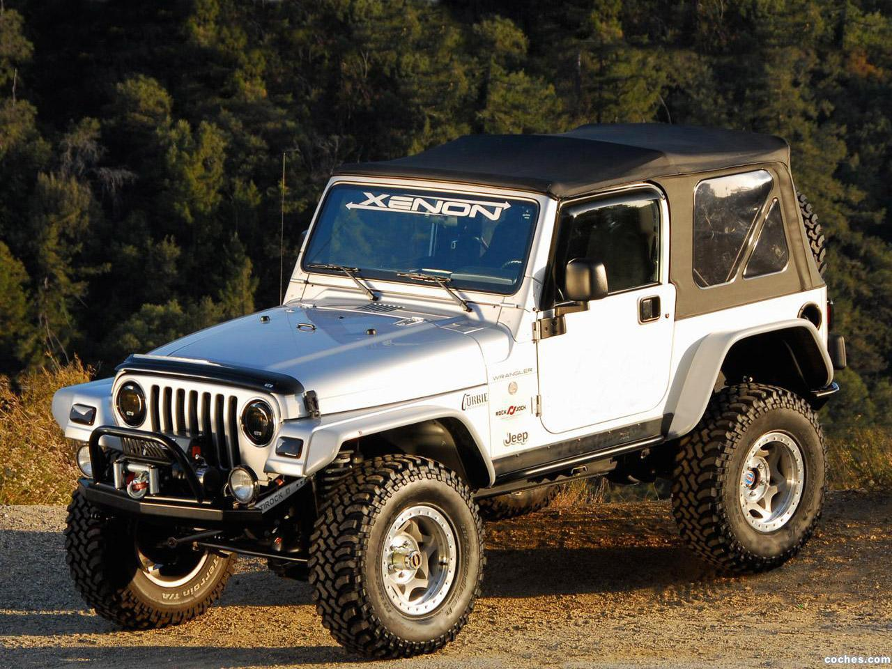 Foto 0 de Xenon Jeep Wrangler TJ 1997