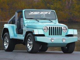 Ver foto 1 de Xenon Jeep Wrangler WW TJ 1997